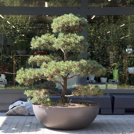 Eternit 'Lausanne'  Pflanzenkübel 01