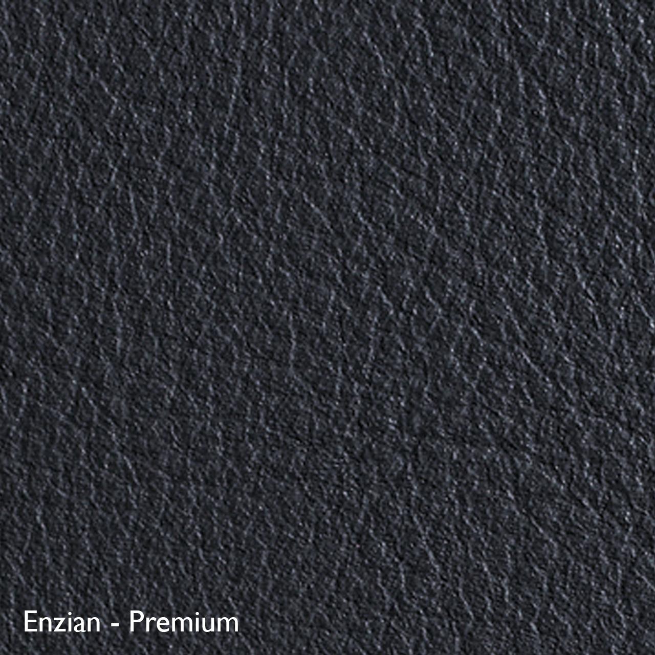 Classicon Sessel 'Euvira' mit Polsterung  Eiche natur,  Filzgleiter,  Enzian - Premium