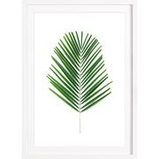 Botanischer Kunstprint 'Palm'