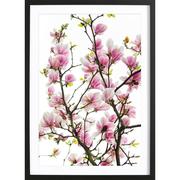 Fotografie 'Magnolia Pink'