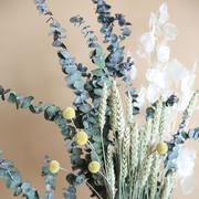 Trockenblumenstrauss 'Lunaria'