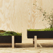Grüne Oase mit dem 'Flower Tray'