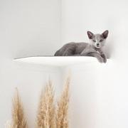 Wandliege 'Corner' für Katzen