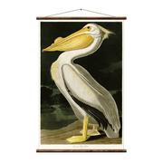 Hochwertige Vintage-Wandkarte 'Pelikan'